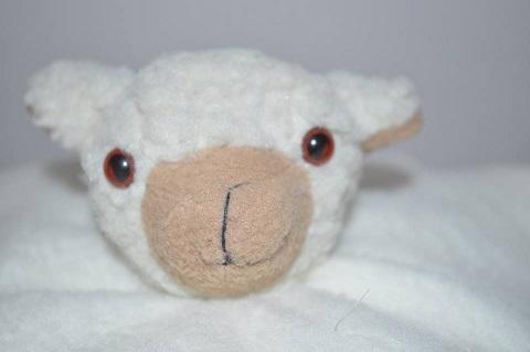 Karoo Sheep - Soothers